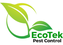 EcoTek