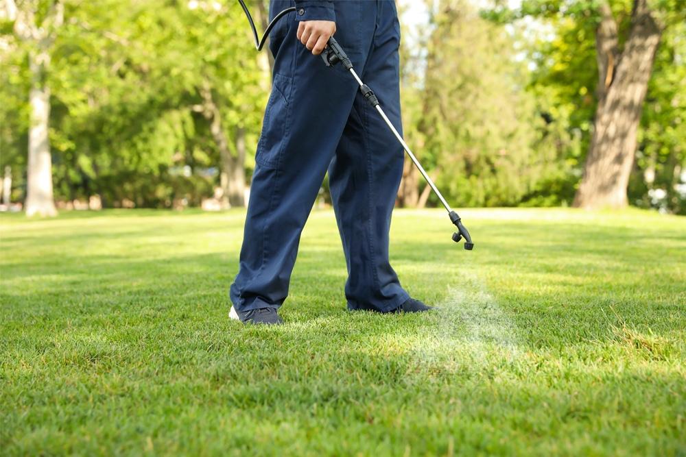benefits of ecofriendly pest control
